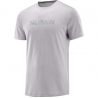 Salomon Agile Graphic Tee M Alloy Homme